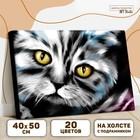 Картина по номерам на холсте с подрамником «Котик» 40х50 см - фото 7683290