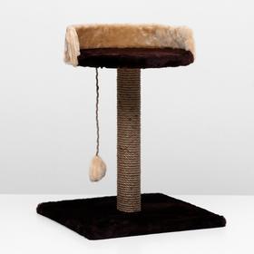 "Когтеточка ""Столбик"" с лежанкой, 40 х 40 х 55 см, тёмно-коричневая"