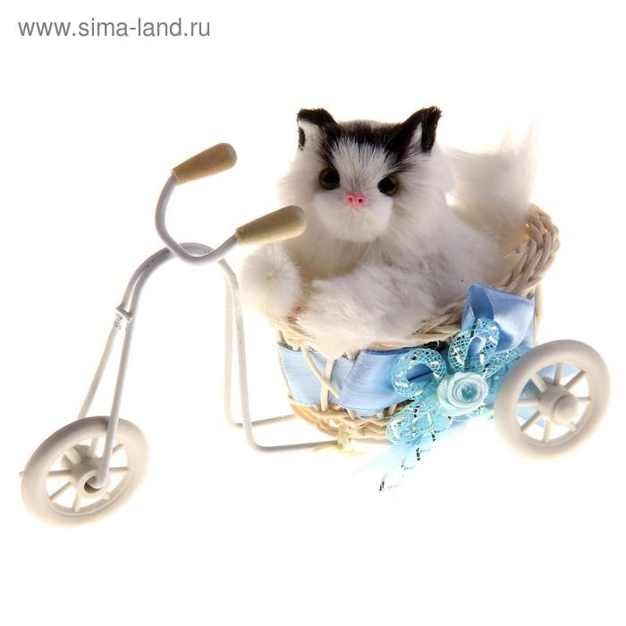 "Пушистик ""Кот на велосипеде"", цвета МИКС"