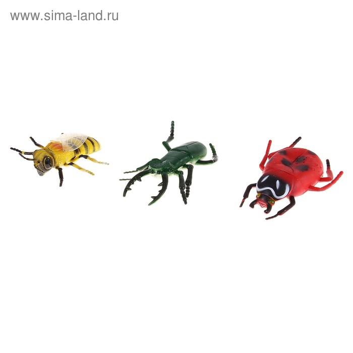 """Набор животных """"Насекомые"""" (набор 3 шт.)"""