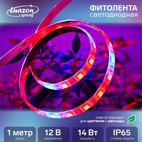 Светодиодная лента для растений Luazon Lighting, 1м, 60SMD5050/м, 14Вт/м, IP65, 220 В