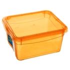 """Ящик для хранения, квадратный 2 л """"Колор. Стайл"""", цвет МИКС"""