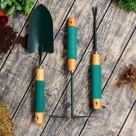 Набор садового инструмента, 3 предмета: совок, мотыжка, корнеудалитель, длина 36 см, деревянные ручки с поролоном Ош
