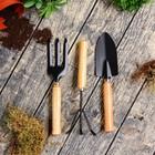 Набор садового инструмента, 3 предмета: совок, рыхлитель, вилка, длина 24 см, деревянные ручки, УЦЕНКА