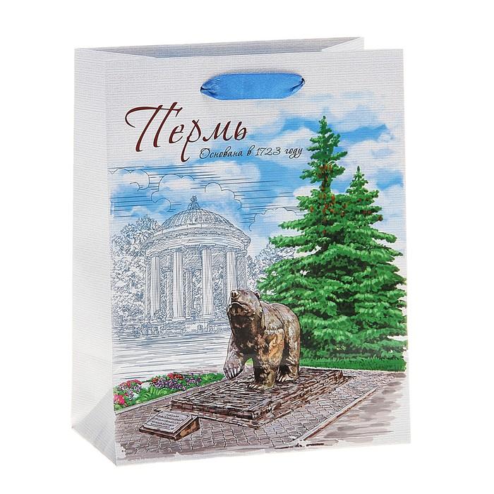 Пакет подарочный MS «Пермь»