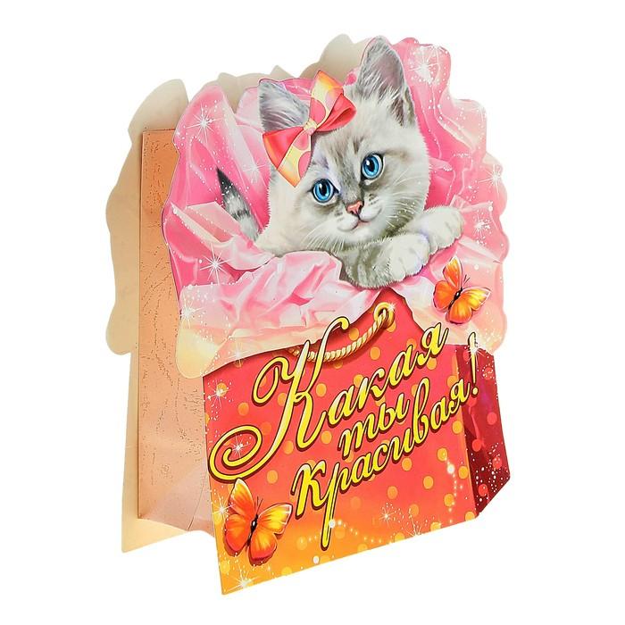 Пакет–открытка «Котёнок»