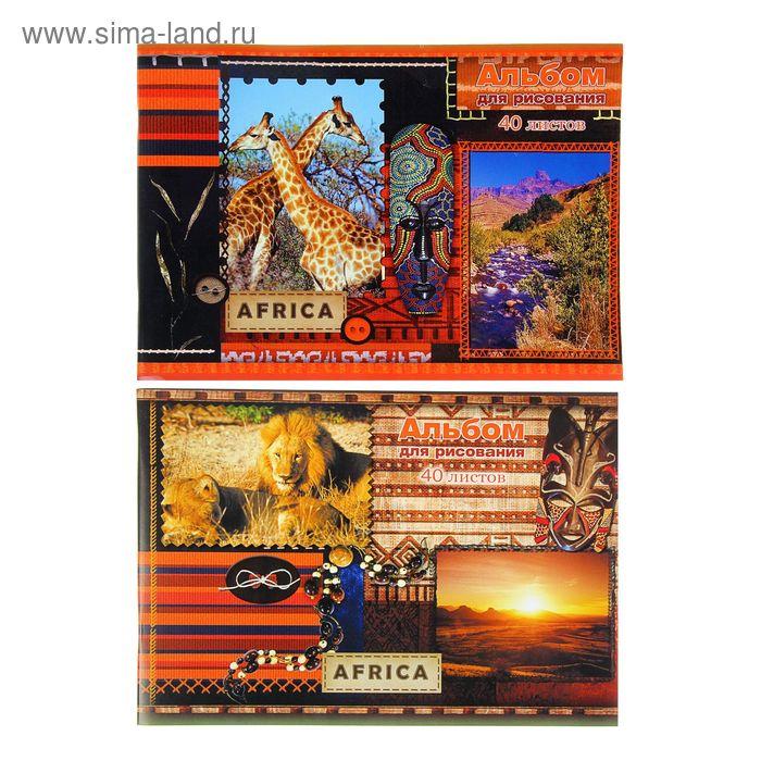 Альбом для рисования А4, 40 листов на скрепке Africa, обложка картон 190-215г/м2, блок офсет 100г/м2, МИКС