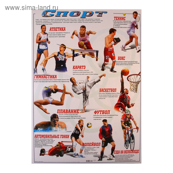 """Плакат """"Спорт"""""""