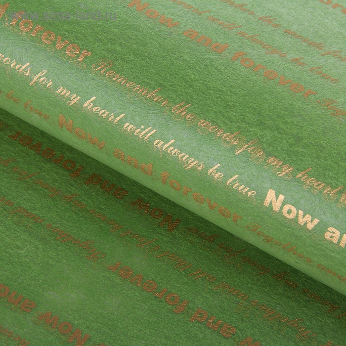 """Фетр ламинированный """"Пожелания"""", зеленый, 60 х 60 см"""