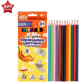 12 colors Calligrata sharpened pencils, hexagon, plastic, cardboard packaging, euro-weight