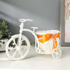 Корзинка декоративная 'Велосипед-кашпо горшочком' Ош