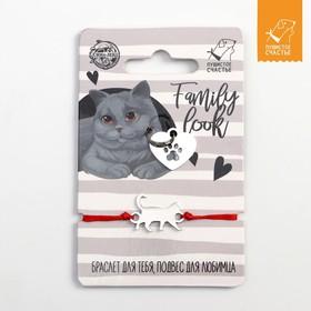 Подвес для кошки и браслет на руку «Британский кот»