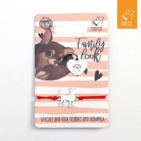 Подвес для собаки и браслет на руку «Чихуахуа»