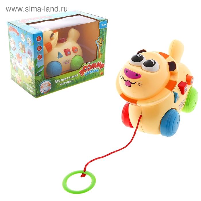 """Каталка музыкальная """"Львёнок"""" на верёвке, световой эффект, работает от батареек"""