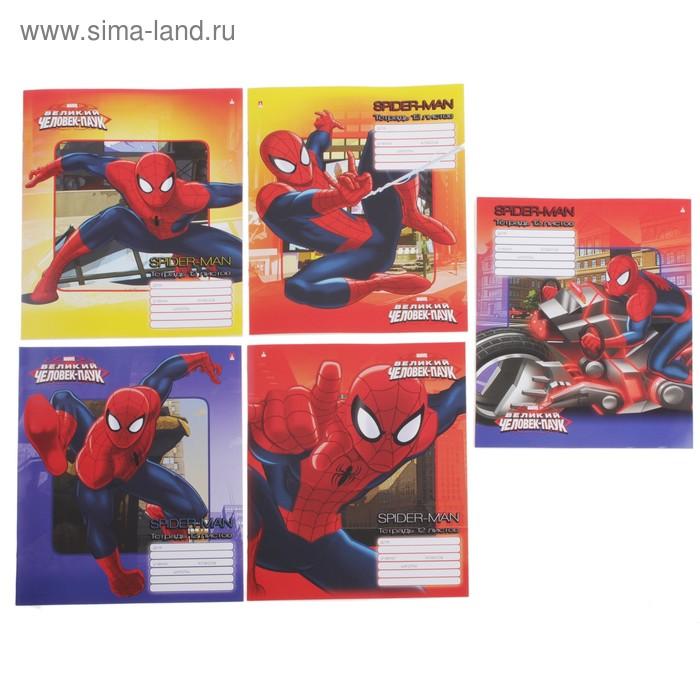 """Тетрадь 12 листов линейка Marvel """"Человек-паук"""", картонная обложка, 5 видов МИКС"""