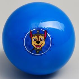 """Мяч детский Paw Patrol """"Гончик"""", 16 см, 50 гр, цвета МИКС"""