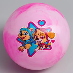 """Мяч детский Paw Patrol """"Скай и Эверест"""",  22 см, 60 гр, мрамор, МИКС"""
