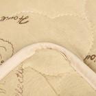 """Одеяло облегчённое Адамас """"Верблюжья шерсть"""", размер 200х220 ± 5 см, 200гр/м2, чехол п/э - фото 62578"""