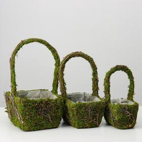 Набор корзин 3шт, из травы