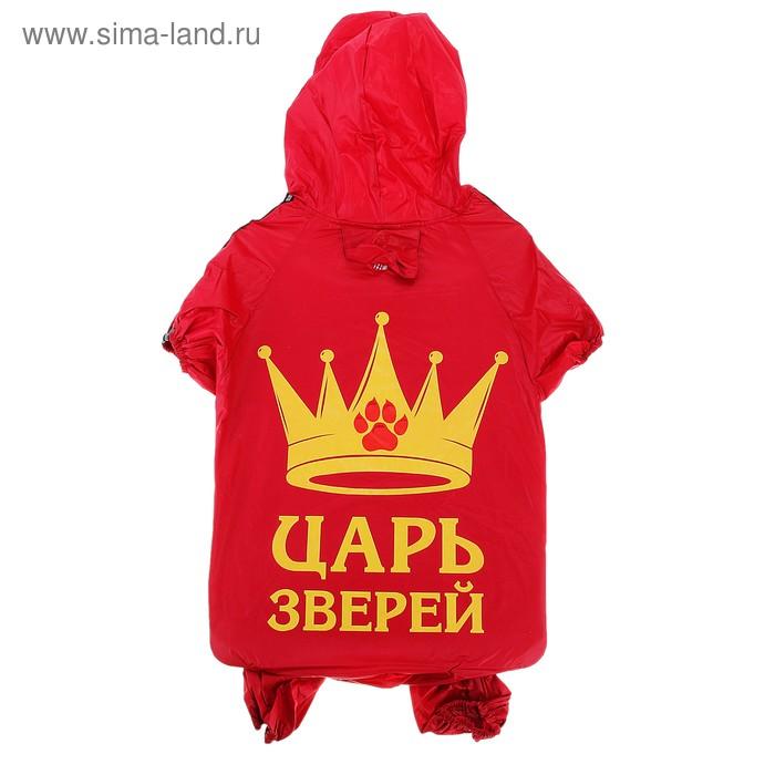 """Комбинезон-дождевик """"Царь зверей"""", размер 3XL (ДС 55 см, ОГ 78 см)"""