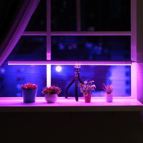 Светильник для растений, 14 Вт, 15 мкмоль/с, длина 900мм, высота установки свет 200 мм