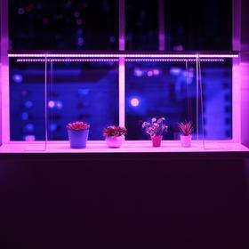 Светильник для растений, 18 Вт, 19 мкмоль/с, длина 1200мм, вилка, высота установки 500 мм