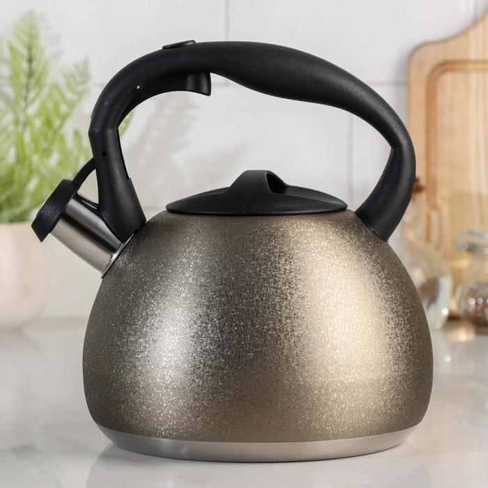 Чайник со свистком «Бархат», 3 л - фото 564244