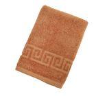 Полотенце махровое однотонное Антей цв жаренный орех 50*90см 100% хлопок 400 гр/м