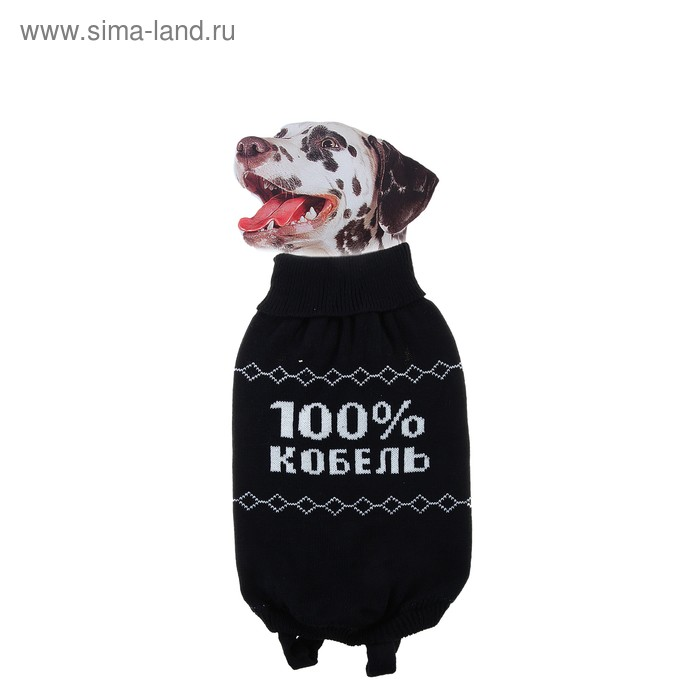 "Свитер XL ""100% кобель"" (ДС 38-42 см, ОГ 54-60 см)"