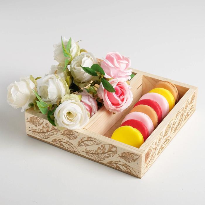 Ящик-кашпо подарочный «Перья», 2 ячейки, 20 × 20 × 4,5 см - фото 863090