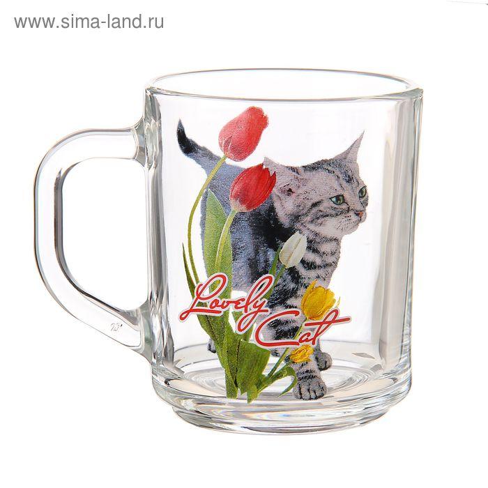 """Кружка стеклянная 200 мл """"Кошки в цветах"""", рисунок МИКС"""