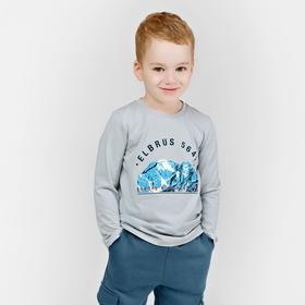 Лонгслив для мальчиков, рост 110 см, цвет голубой