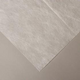 Материал укрывной, 10 × 1,6 м, плотность 42, с УФ-стабилизатором, белый