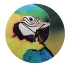 """Часы настенные, серия: Животный мир, """"Попугай"""", d=40 см"""