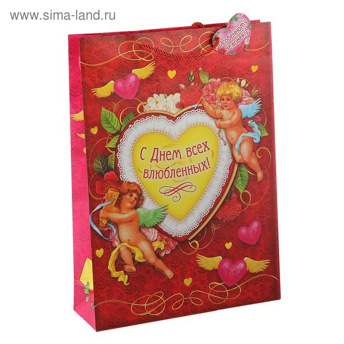 Пакет ламинат вертикальный с тиснением «С днём всех влюбленных», 18 х 23 см