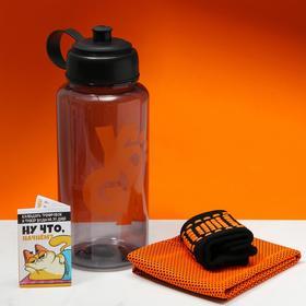 Набор спортивный «Кот», для йоги: бутылка, полотенце, носки one size, календарь тренировок