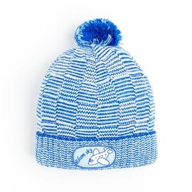Шапка для мальчика, цвет синий, размер 48-50 (3-5 лет)