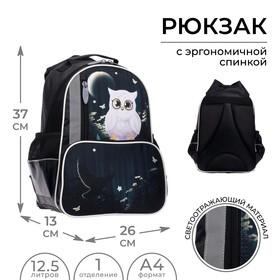 Рюкзак школьный, Calligrata, 37 х 26 х 13 см, эргономичная спинка, «Совушка»