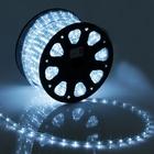 LED string 11 mm, round, 100 m, fixing, 2W-LED/m-24-220V, CPL. set d/div. White