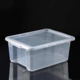 Контейнер для хранения с крышкой Porter, 14 л, 43,5×31,5×17,5 см, цвет прозрачный