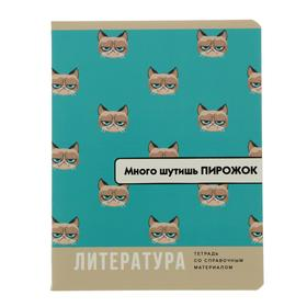 """Тетрадь предметная """"Веселье начинается"""", 40 листов в линейку """"Литература"""", обложка мелованный картон, блок офсет"""