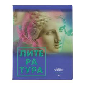 """Тетрадь предметная """"Твоя мечта"""", 48 листов в линейку """"Литература"""", обложка мелованный картон, матовая ламинация, блок офсет"""