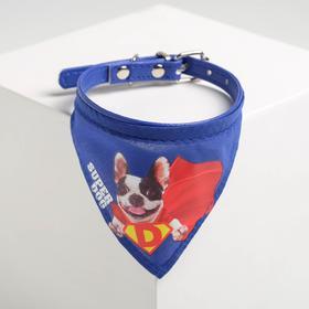 Ошейник с платком Super dog 32 х 1 см, синий,