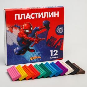 Пластилин 12 цветов 180 г «Супергерой», Человек-паук
