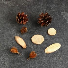 """Набор природного декора """"Лесок и колосок"""", 11 предметов"""