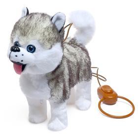 Интерактивная собака «Мой хаски» ходит, лает, поёт песенку, виляет, хвостиком