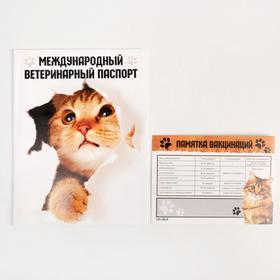 Обложка для ветеринарного паспорта «Международный ветеринарный паспорт» и памятка для кошки