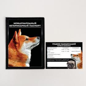 Обложка для ветеринарного паспорта собаки «Международный ветеринарный паспорт» и памятка