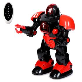 Radio-controlled robot