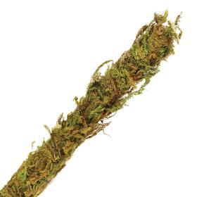 Лиана искусственная со мхом, 1 х 200 см